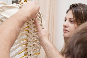 Chiropractors The Backbone of the Medical Field