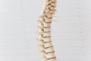 What is a Spinal Subluxation